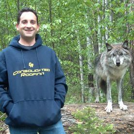 employee next to wolf